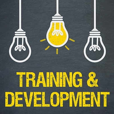 Training and Development courses